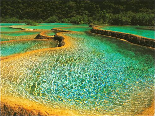 五彩池风景图片—春 五彩池虽在九寨沟众海中最小巧玲珑,然而它